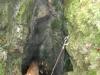 20120408_ncl2204790_039-gouffre-de-haut-cret