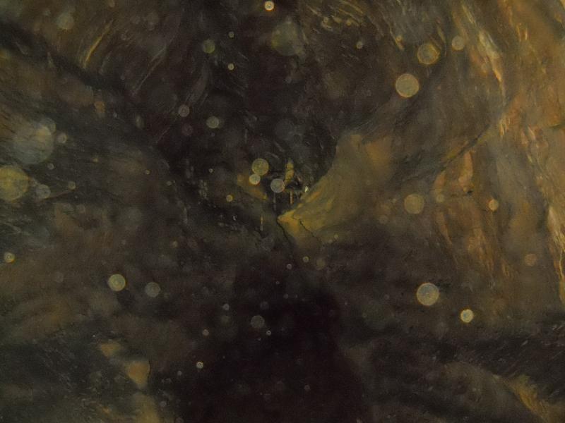 20151205_ncl2222314_025-bournois-grotte-de-la-malatiere