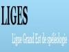 logo-liges